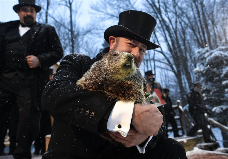 Punxsutawney Phil last Tuesday when he emerged from his burrow via Pittsburgh Gazette.